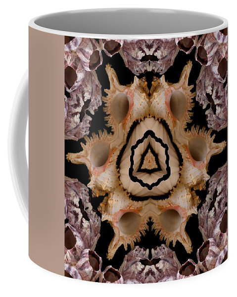 Seashells Coffee Mug featuring the photograph Mandala Murex and Barnacle Shell by Nancy Griswold
