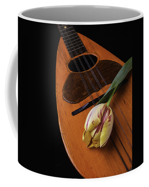 Yellow Coffee Mug featuring the photograph Mandolin And Tulip by Garry Gay