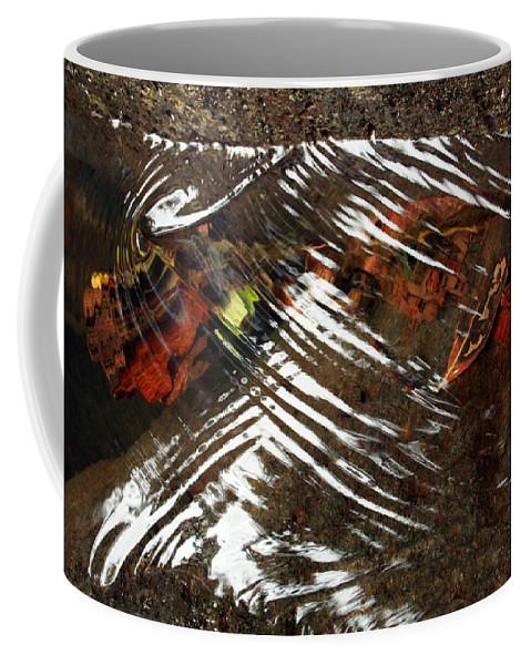Manoa Falls Coffee Mug featuring the photograph Manoa's Fallen by Jennifer Bright