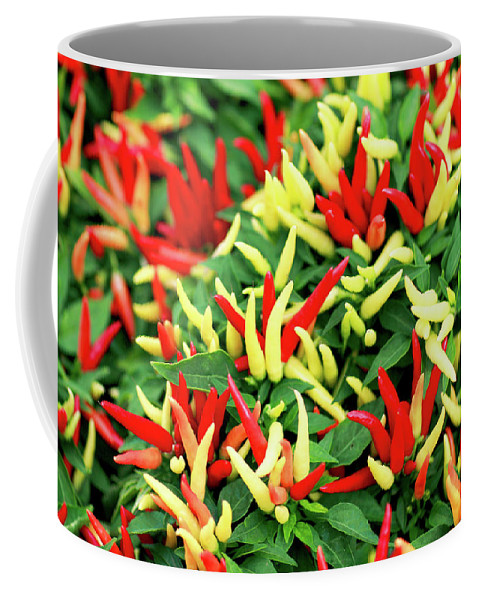 Farmers Market Coffee Mug featuring the photograph Many Peppers by Todd Klassy