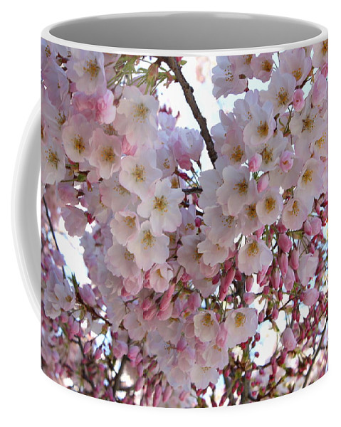 Pink Blossoms Coffee Mug featuring the photograph Many Pink Blossoms by Carol Groenen
