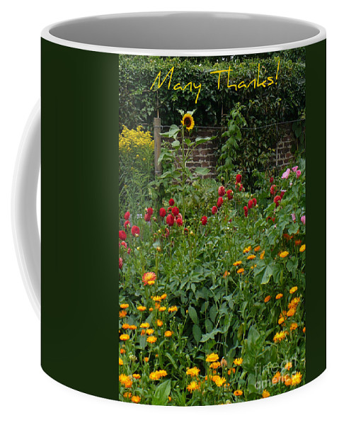 Thank You Card Coffee Mug featuring the greeting card Many Thanks Card by Carol Groenen