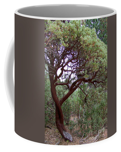 Manzanita Tree Coffee Mug featuring the photograph Manzanita Tree By The Road by Mary Deal