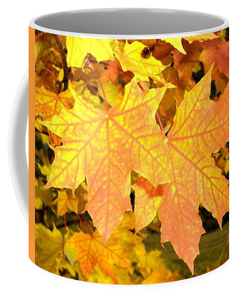 Autumn Coffee Mug featuring the photograph Maple Mania 2 by Will Borden