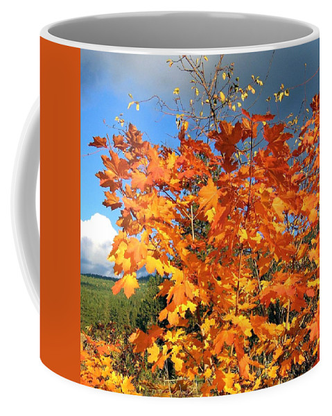 Autumn Coffee Mug featuring the photograph Maple Mania 8 by Will Borden