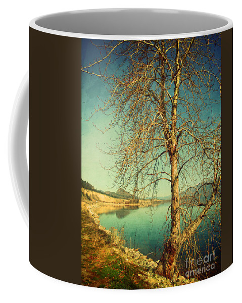 Tree Coffee Mug featuring the photograph March 24 2010 by Tara Turner