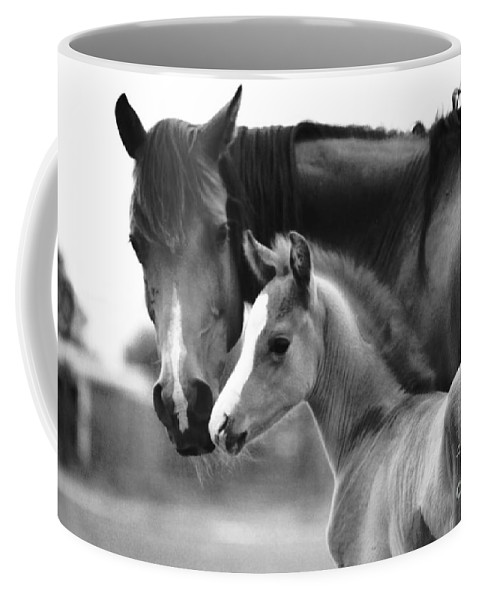 Mare Coffee Mug featuring the photograph Mare And Foal In Black And White by Jim And Emily Bush