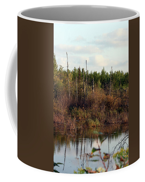 Marsh Lake Water Aquatic Wild Natural Mother Nature Pond Coffee Mug featuring the photograph Marsh by Andrea Lawrence