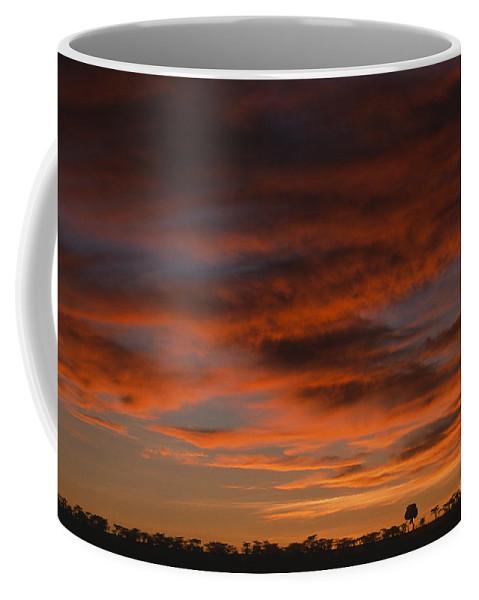 Africa Coffee Mug featuring the photograph Masai Mara Sunset by Sandra Bronstein