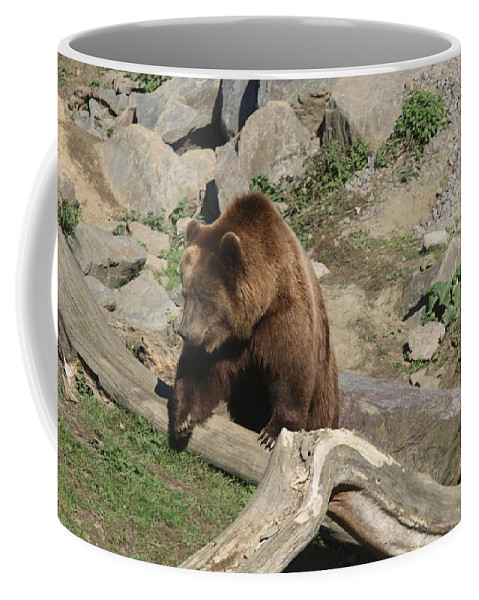 Bear Coffee Mug featuring the photograph Master Bruin by Christiane Schulze Art And Photography