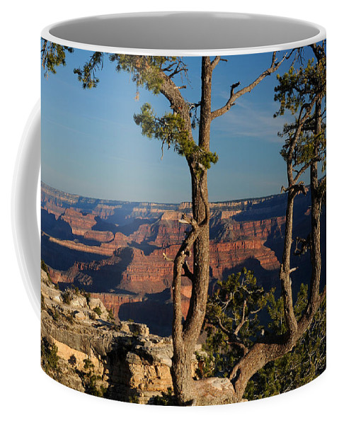 Mather Point Grand Canyon Coffee Mug featuring the photograph Mather Point South Rim Grand Canyon by Cyril Furlan