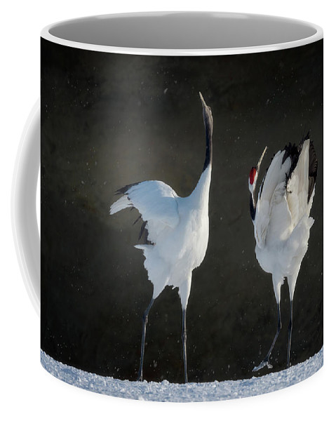 Red-crowned Cranes Coffee Mug featuring the photograph Mating Dance by Cheryl J Schneider