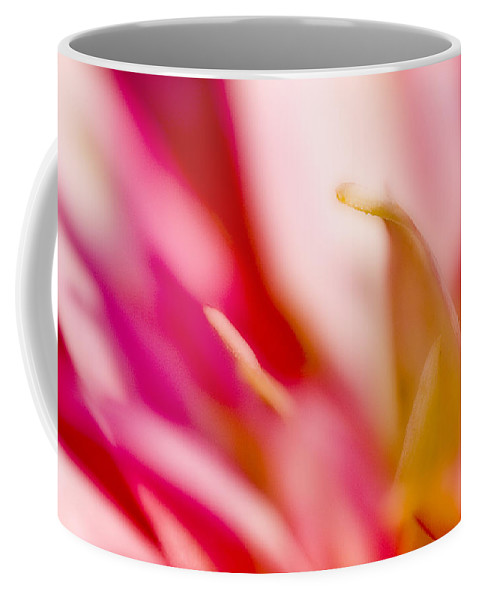 Flower Coffee Mug featuring the photograph May Pink by Ches Black