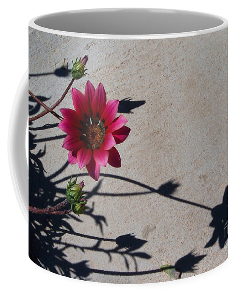 Flowers Coffee Mug featuring the photograph Me And My Shadow by Kathy McClure
