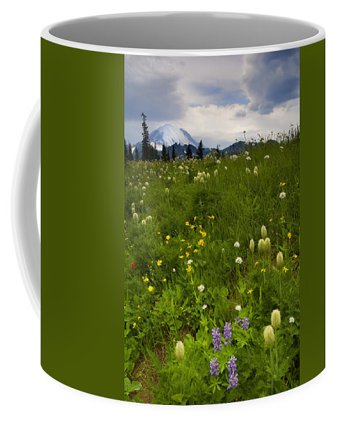 Rainier Coffee Mug featuring the photograph Meadow Beneath The Storm by Mike Dawson