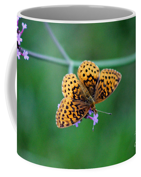 Animal Coffee Mug featuring the photograph Meadow Fritillary Butterfly 2015 by Karen Adams