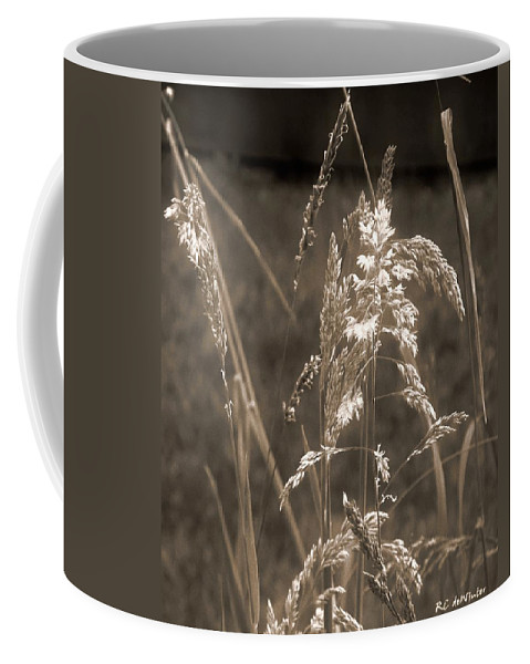 Connecticut Coffee Mug featuring the photograph Meadow Grass In Sepia by RC DeWinter