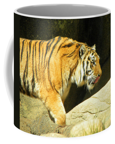 Tiger Coffee Mug featuring the photograph Meal Time by Sandi OReilly
