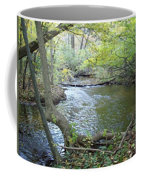Tmad Coffee Mug featuring the photograph Mejestic Dreams by Michael TMAD Finney