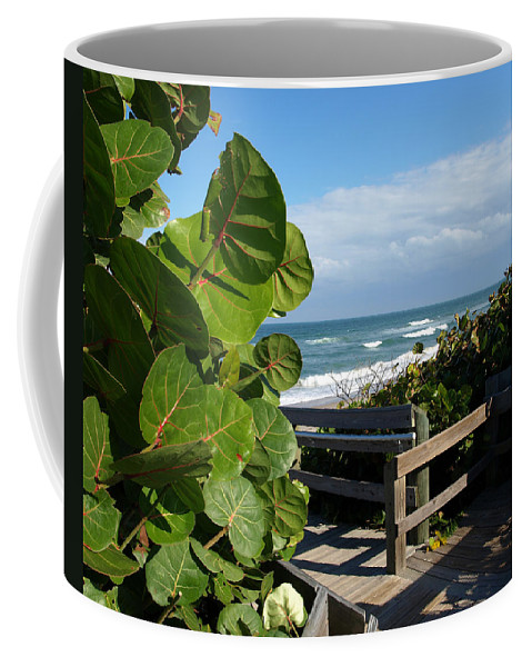 Seagrape; Sea; Grape; Ocean; Cocoanut; Point; Melbourne; Beach; Florida; Waves; Surf; Seascape; Brev Coffee Mug featuring the photograph Melbourne Beach Florida by Allan Hughes