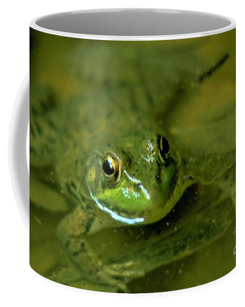 Frog Coffee Mug featuring the photograph Mellow Frog by Sven Brogren