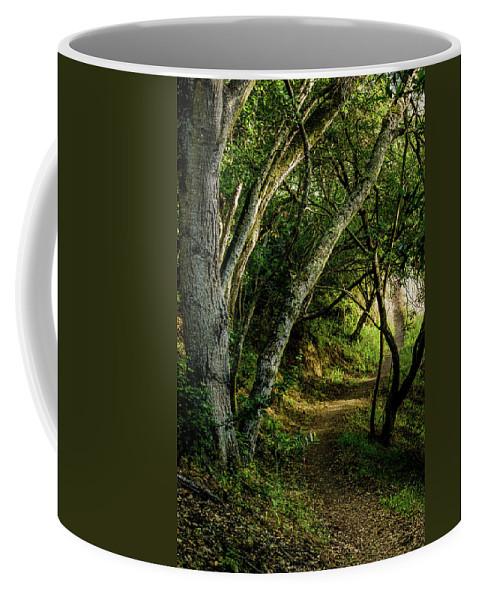 Mendoza Trail Coffee Mug featuring the photograph Mendoza Trail by Joe Azevedo