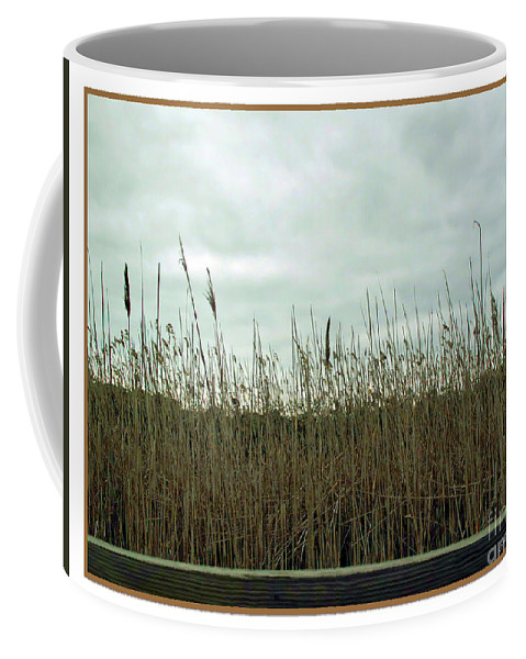 Botanical Coffee Mug featuring the photograph Mentor Marsh by Joan Minchak