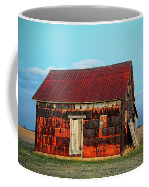 House Coffee Mug featuring the photograph Metal House by David Arment