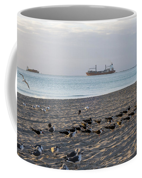 Miami Coffee Mug featuring the photograph Miami Beach Flock Of Birds Sunrise by Toby McGuire
