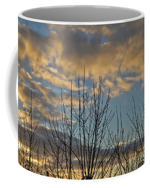 Nature Coffee Mug featuring the photograph Mia's Sunrise by Terri Waters