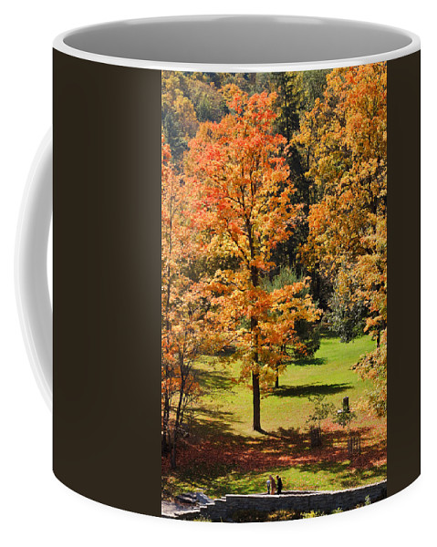 Travel Coffee Mug featuring the photograph Middle Falls Viewpoint In Letchworth State Park by Louise Heusinkveld