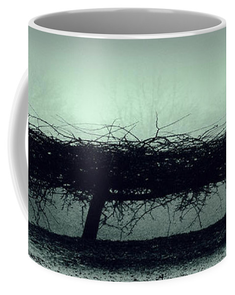 Britain  Coffee Mug featuring the photograph Middlethorpe Tree In Fog Gray And Green Panorama by Tony Grider