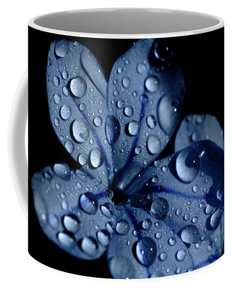 Blue Coffee Mug featuring the photograph Midnight Dew by Donna Blackhall