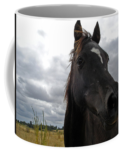 Black Beauty Coffee Mug featuring the photograph Midnight Melody by Susan Baker