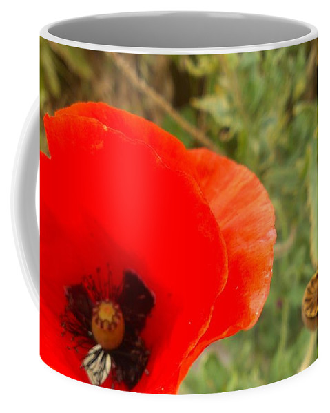 Poppy Coffee Mug featuring the photograph Midsummer Poppy by LKB Art and Photography