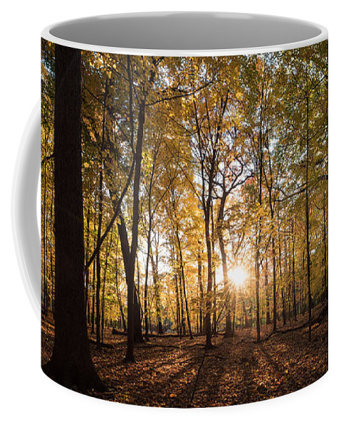 Midwest Coffee Mug featuring the photograph Midwest Forest by Steve Gadomski