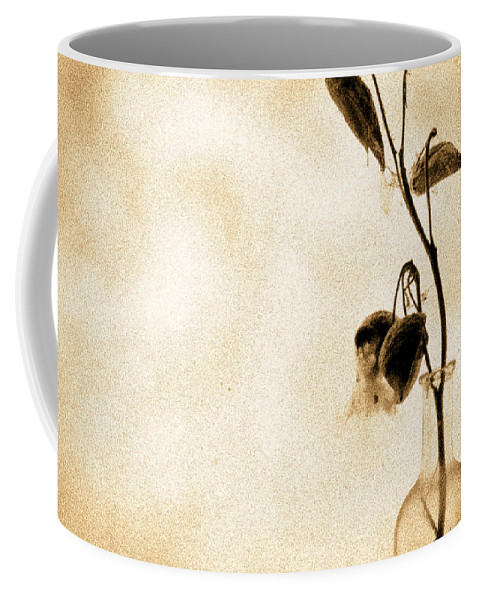 Plant Coffee Mug featuring the photograph Milk Weed In A Bottle by Bob Orsillo