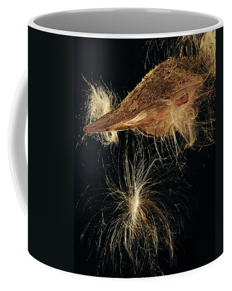 Mgp Photography Coffee Mug featuring the photograph Milkweed Pod by Michael Peychich