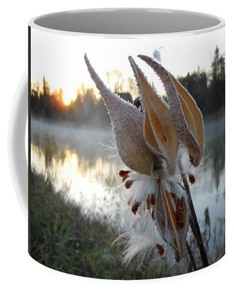 Milkweed Coffee Mug featuring the photograph Milkweed Pods Seeds by Kent Lorentzen