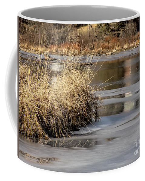 Millpond Coffee Mug featuring the photograph Millpond Scene by William Tasker