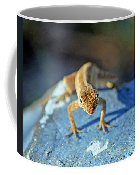 Anole Coffee Mug featuring the photograph Mini Attitude by Kenneth Albin