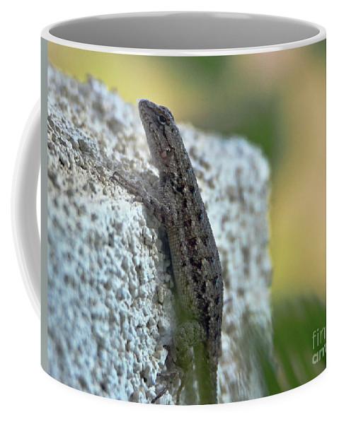 Lizard Coffee Mug featuring the photograph Mini Dinosaur by Debby Pueschel