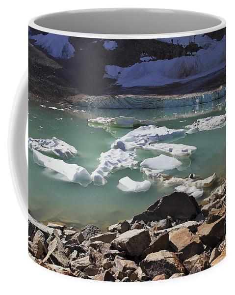 Mini Icebergs Coffee Mug For Sale By Teresa Zieba