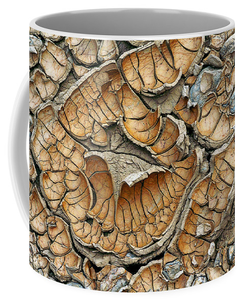 Cracked Mud Coffee Mug featuring the photograph Minnesota Mud by Bill Morgenstern