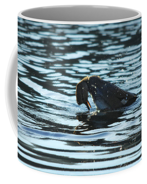 Lake Coffee Mug featuring the photograph Mirror Mirror by Donna Blackhall