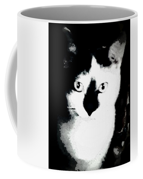 Cat Coffee Mug featuring the photograph Mischief by Antoinette Greenwalt Grude