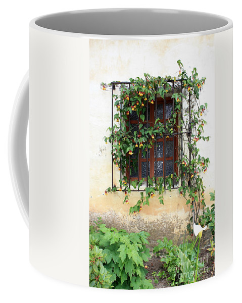 Mission Window Coffee Mug featuring the photograph Mission Window With Yellow Flowers Vertical by Carol Groenen