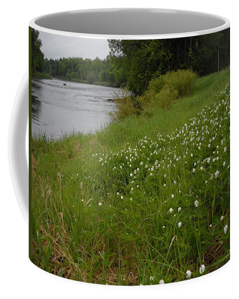 Wild Flowers Coffee Mug featuring the photograph Mississippi River Bank Flowers by Kent Lorentzen