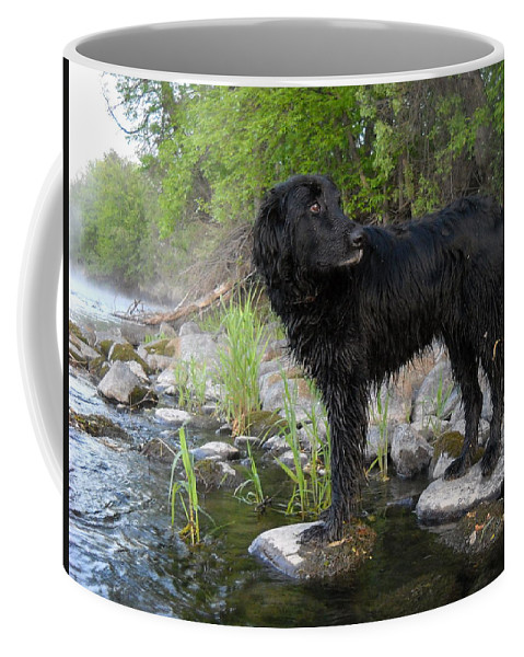 Mississippi River Coffee Mug featuring the photograph Mississippi River Posing Dog by Kent Lorentzen