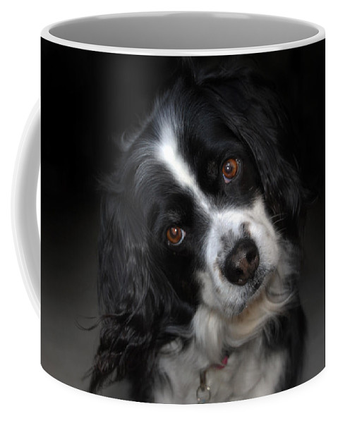 Missy Coffee Mug featuring the photograph Missy by Skip Willits